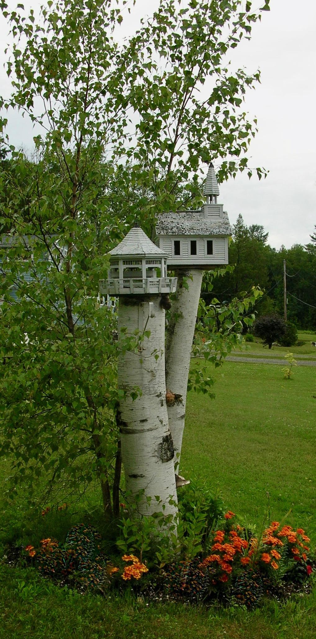 birch bird houses
